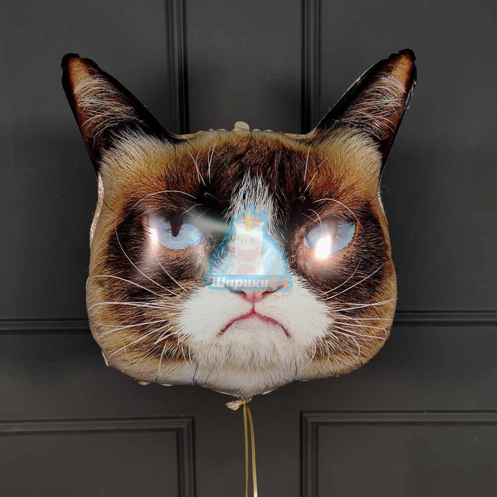 Фольгированная голова Grumpy Cat