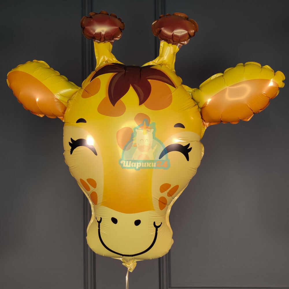 Голова жирафика