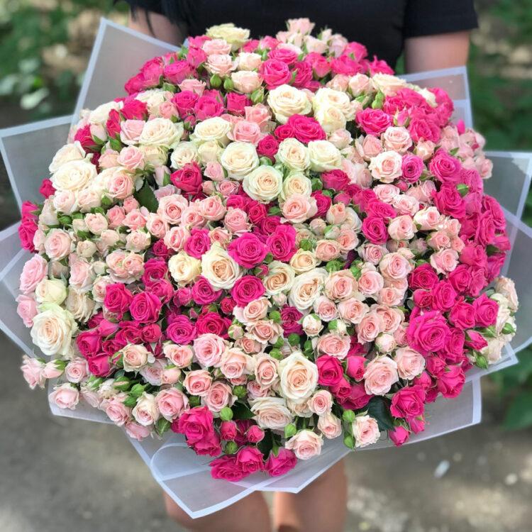 Розово-малиновые кустовые розы 101 шт
