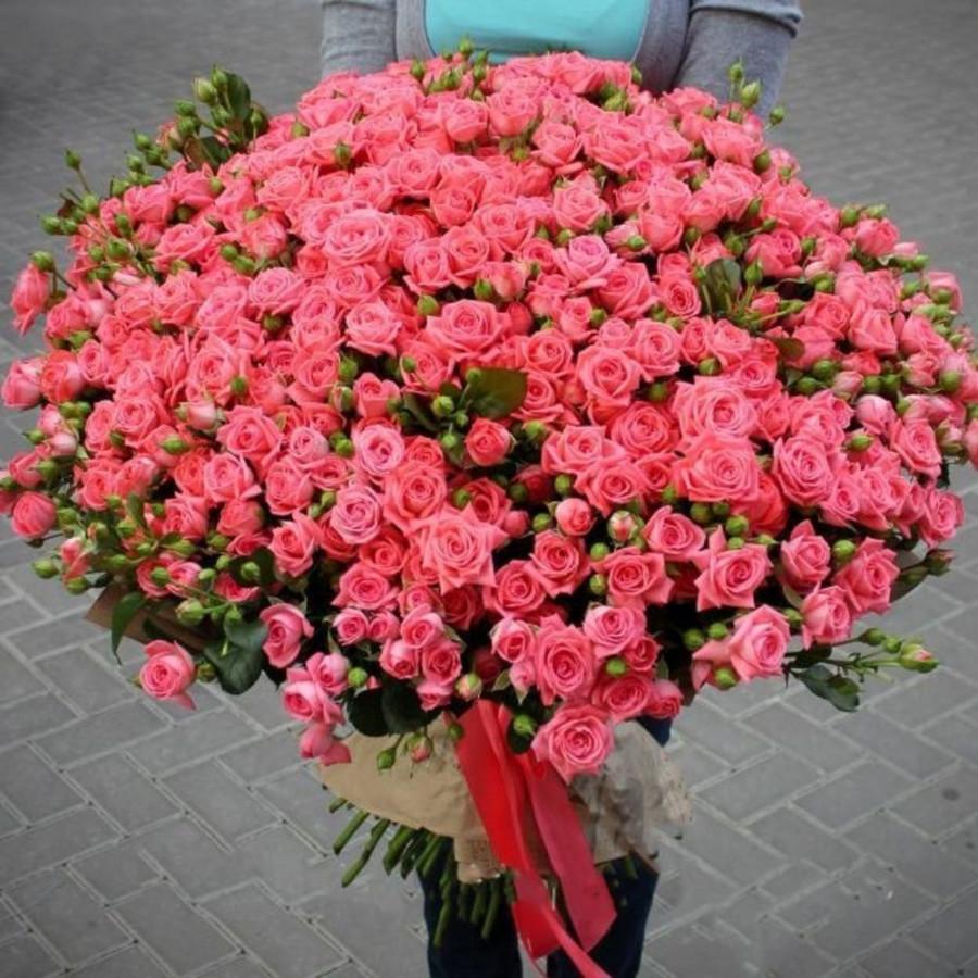 Розовые розы кустовые 101 шт