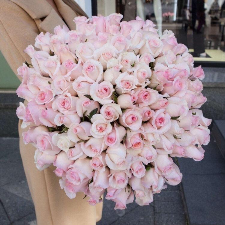 Нежно-розовые розы 101 шт
