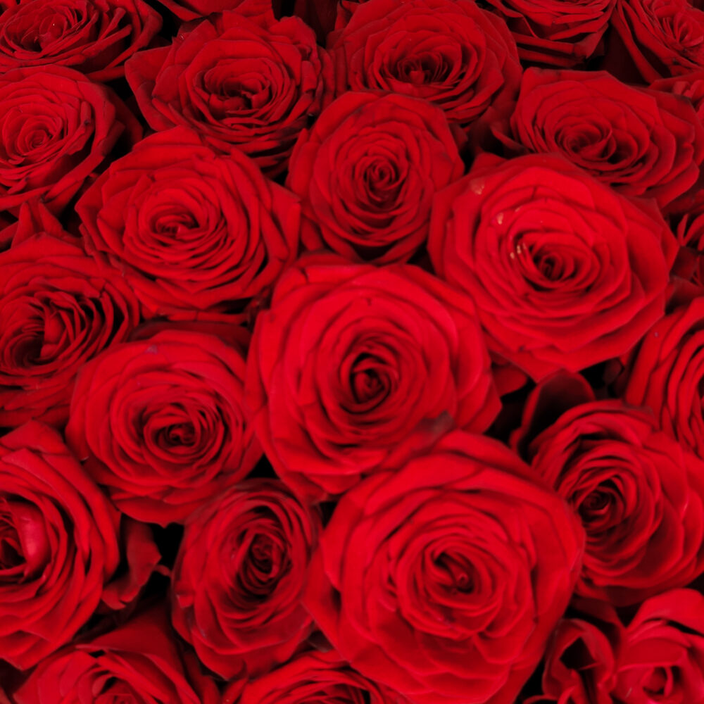 Букет из 101 красной розы Red Naomi